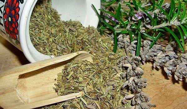 Травы, применяемые для лечения цистита